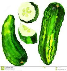 Fruit & Veggie Program